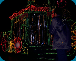 2nd Float: Flora`s Gazebo